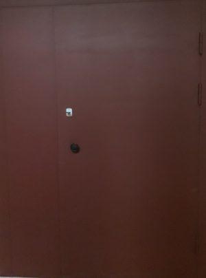 ДТН 2 Эконом(тамбурная дверь)