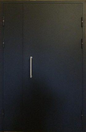 ДТН 2 Стандарт(тамбурная дверь)